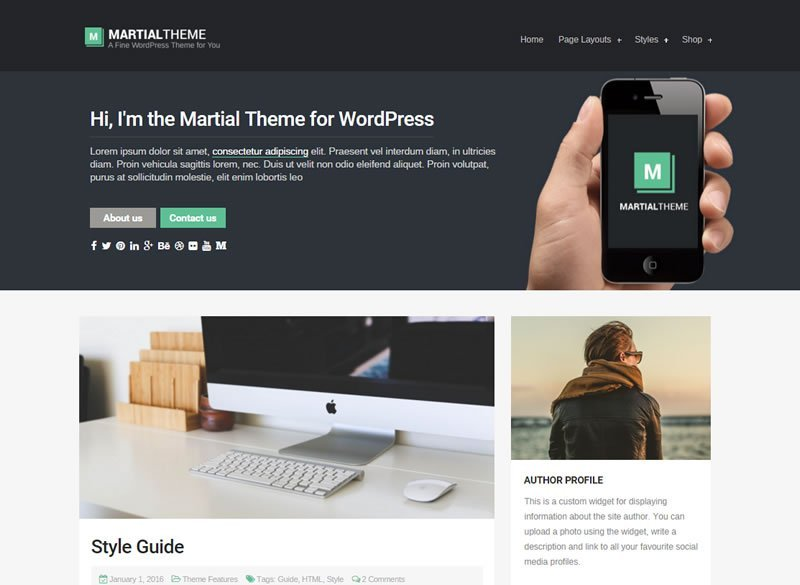 Martial WordPress Blog Theme