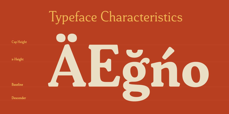Typeface Characteristics